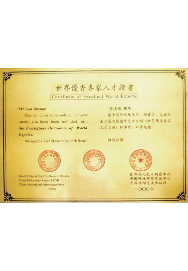 World-level excellent expert certificate